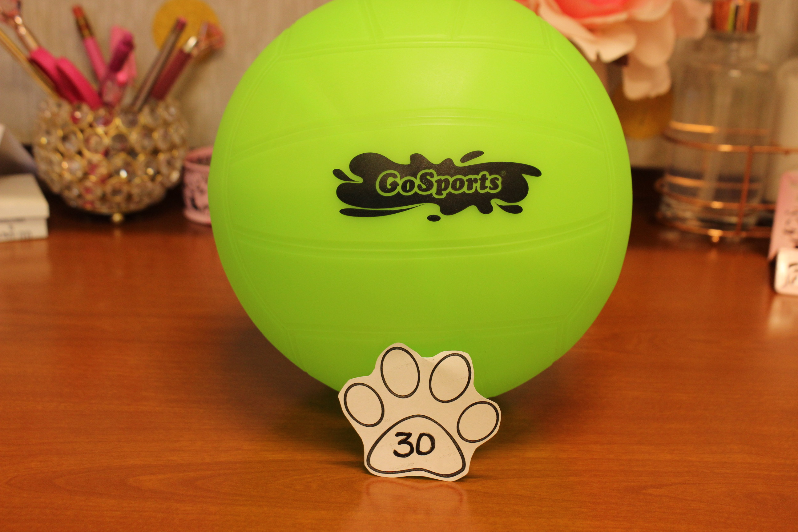 30 Paws Volleyball