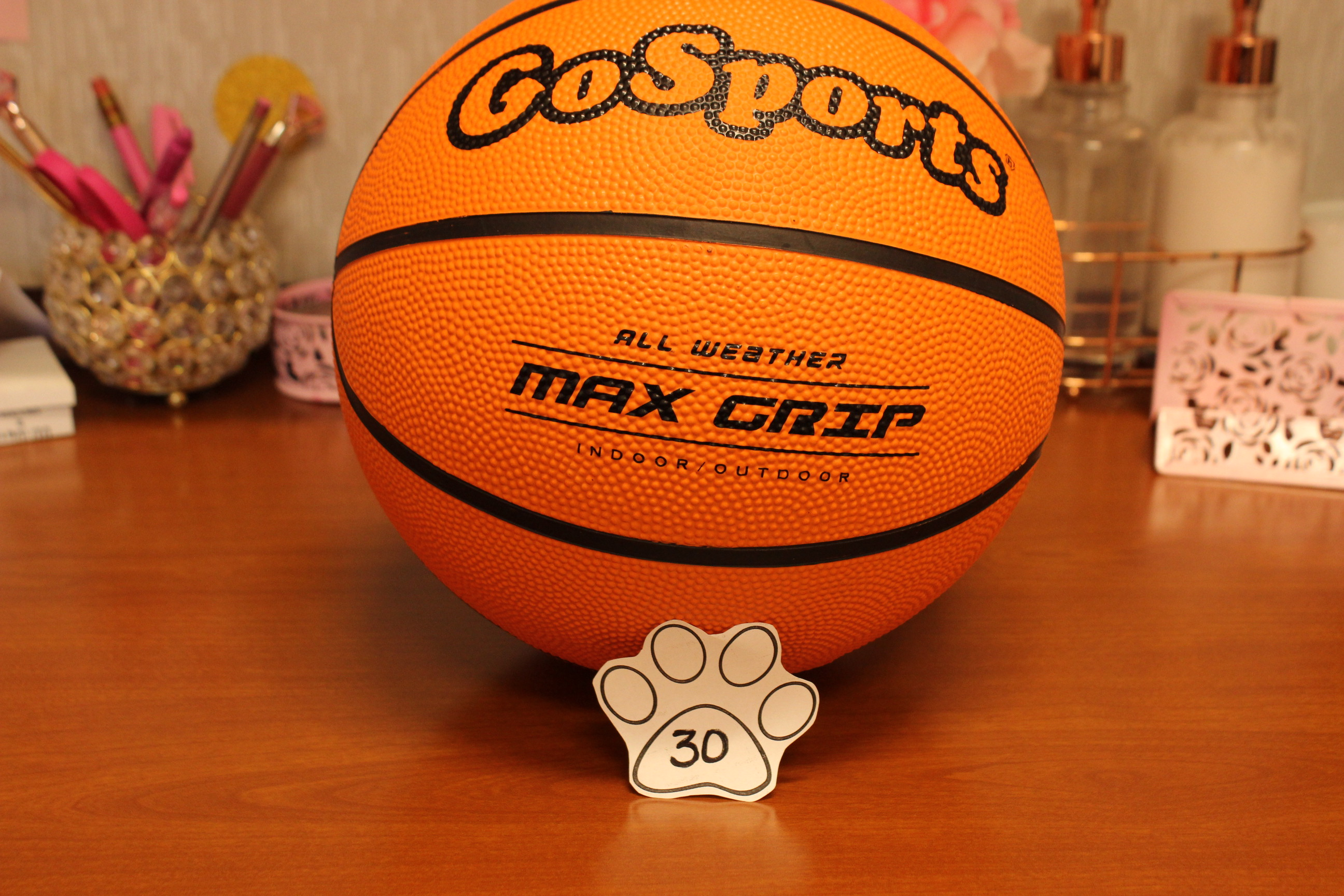 30 Paws Basketball