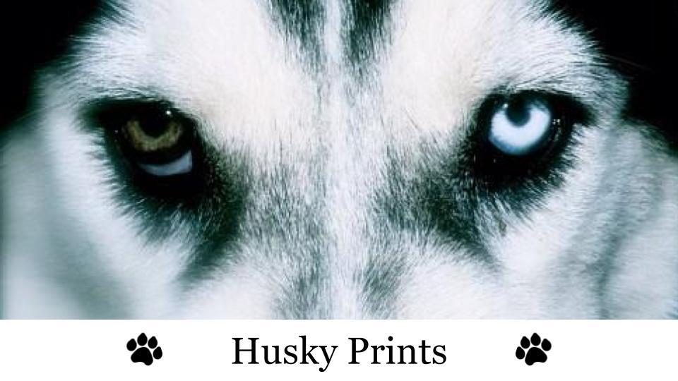 Husky Prints