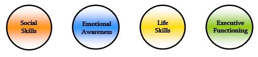 SOCIAL SKILLS, EMOTIONAL AWARENESS, LIFE SKILLS AND EXECUTIVE FUNCTIONING
