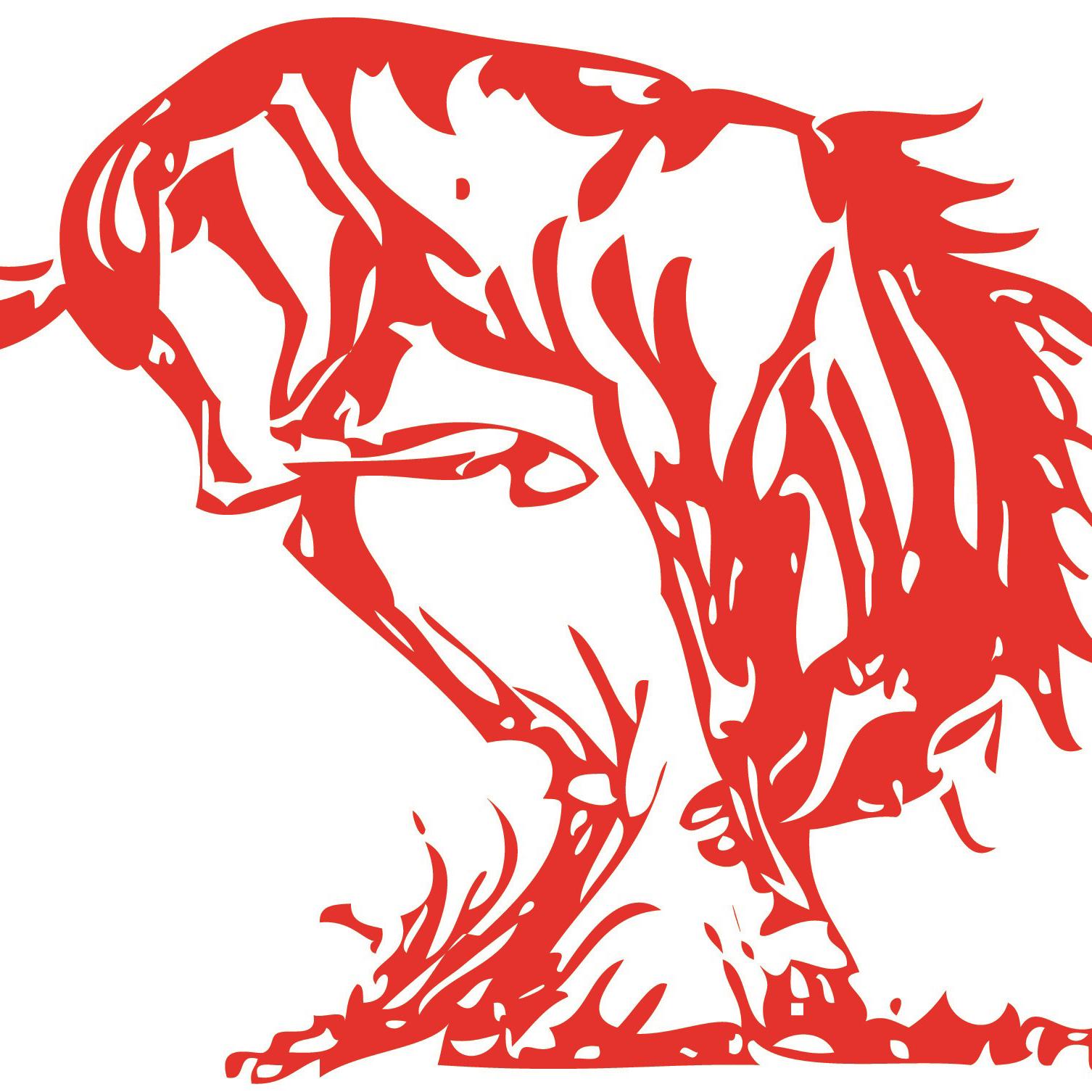 RHS Broncos