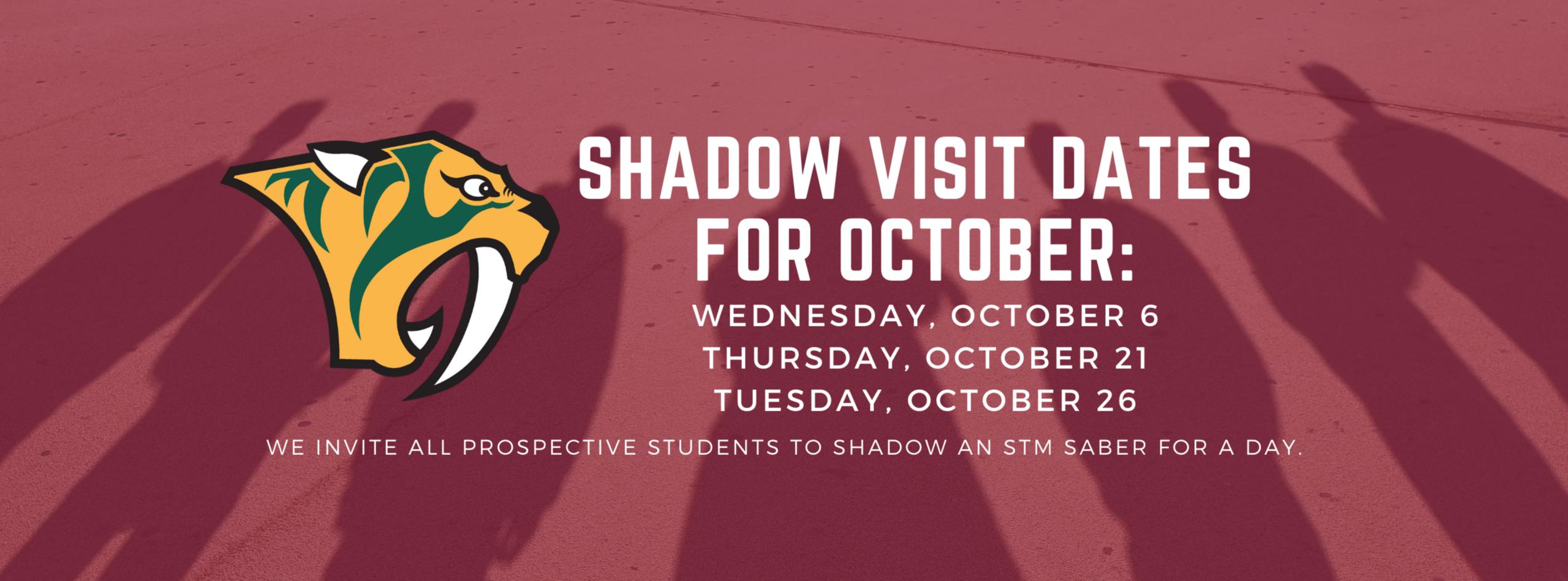 shadow visits