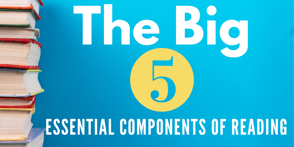 THE BIG 5 ESSENTIAL COMPONENTS OF READING