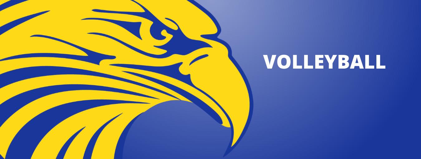 Eagle Logo Volleyball