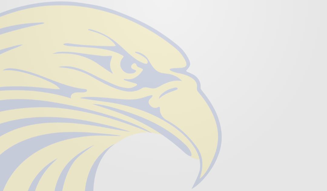 Seacoast Eagle watermark logo