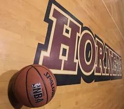 Hornets Logo in the floor