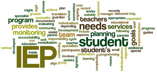 wordle with words from IEP student evaluations