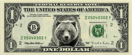 Bear Buck