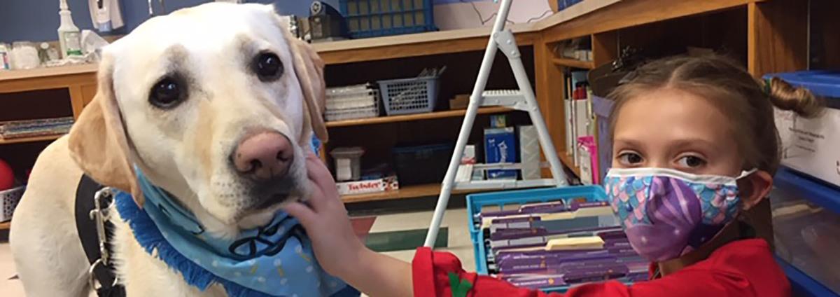 a student pets a service dog