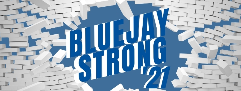 Bluejay Strong