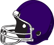 helmet_purple
