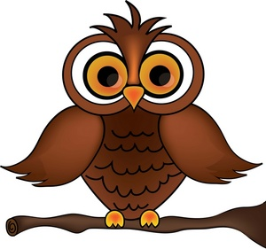 Image of an owl.