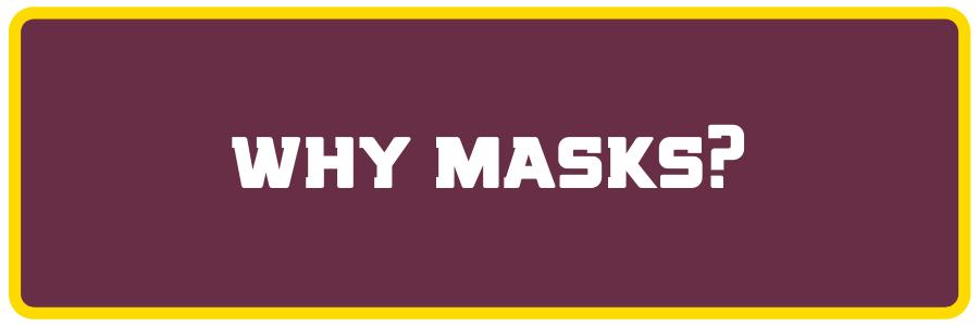 why masks