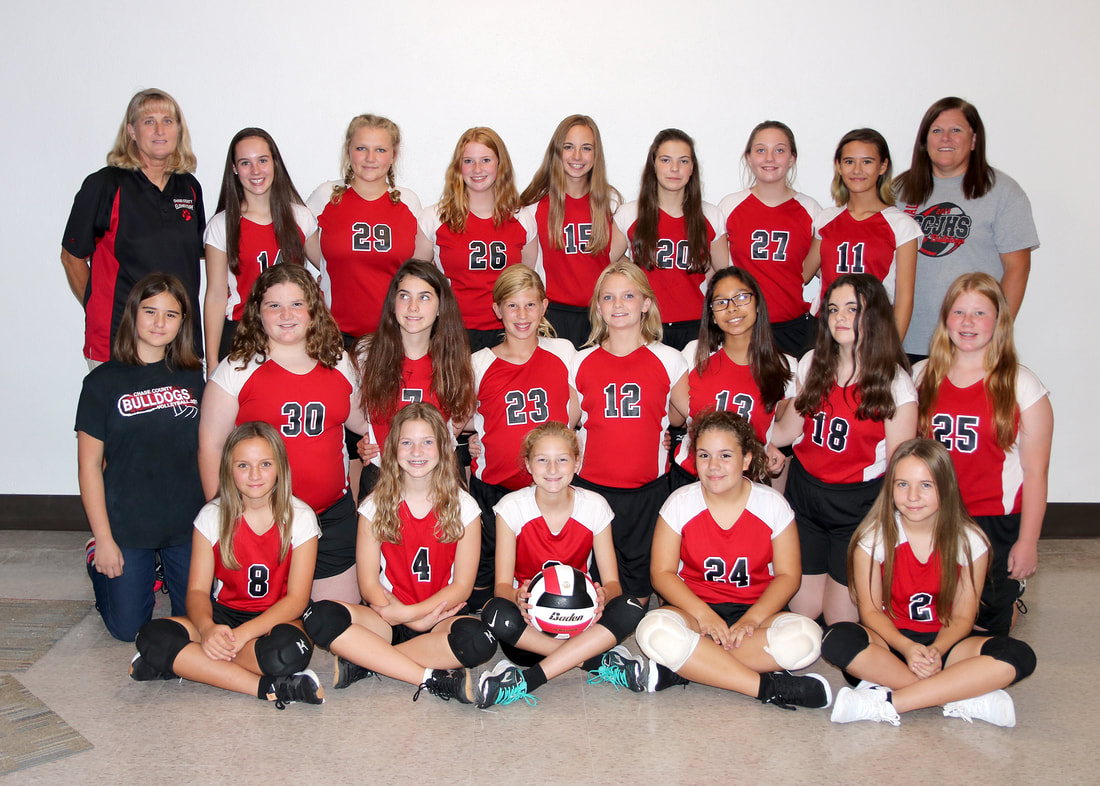 Photo of the JUNIOR HIGH VOLLEYBALL team.