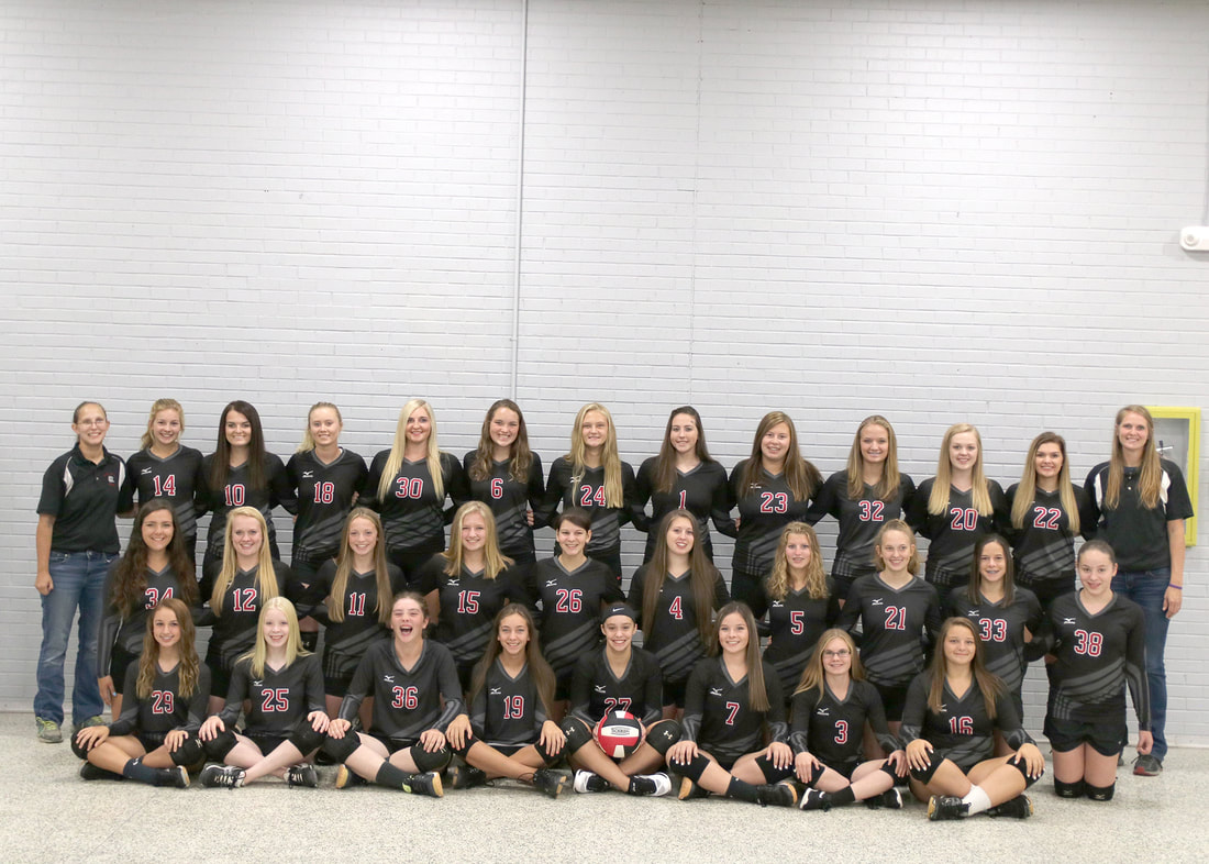 Photo of the HIGH SCHOOL VOLLEYBALL team.