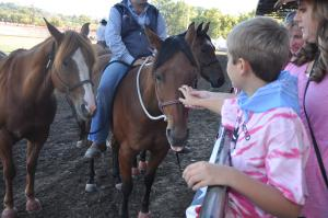A photo of a kid touching a horse.