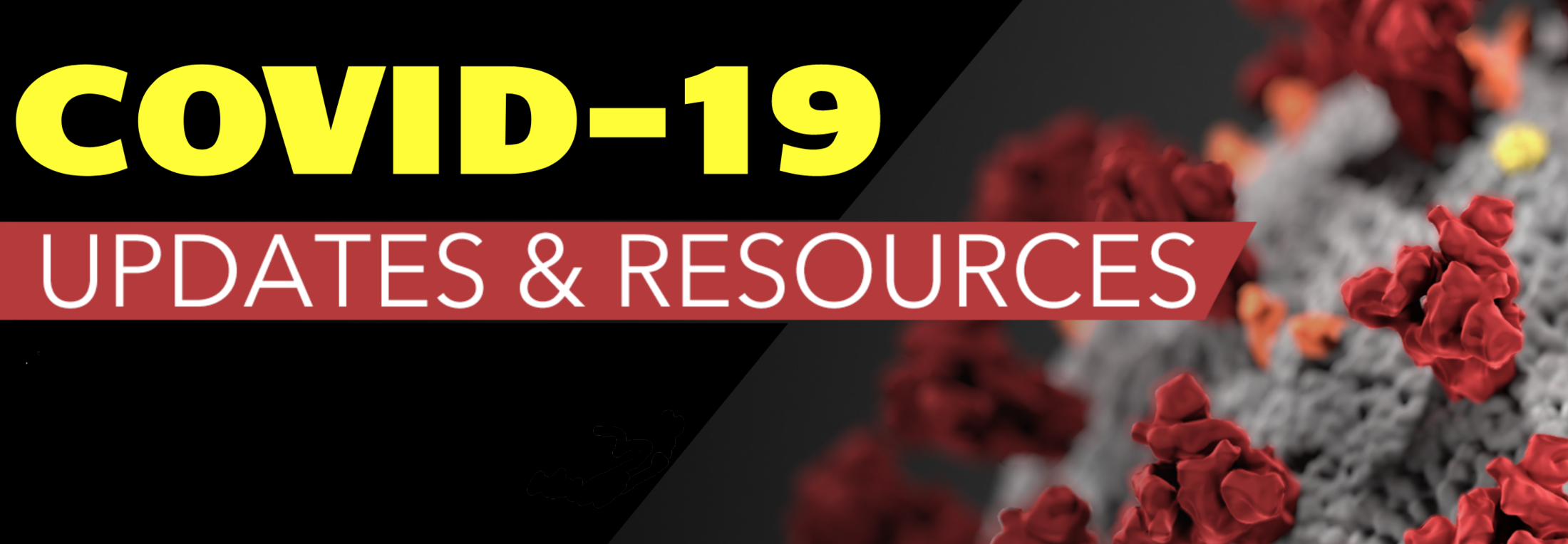 Covid 19 updates and resources logo