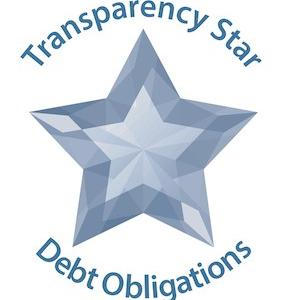 Transparency Star - Debt Obligations