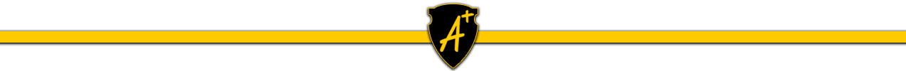 a plus logo with shield