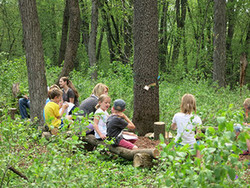 A photo of the kids all siting around the forest
