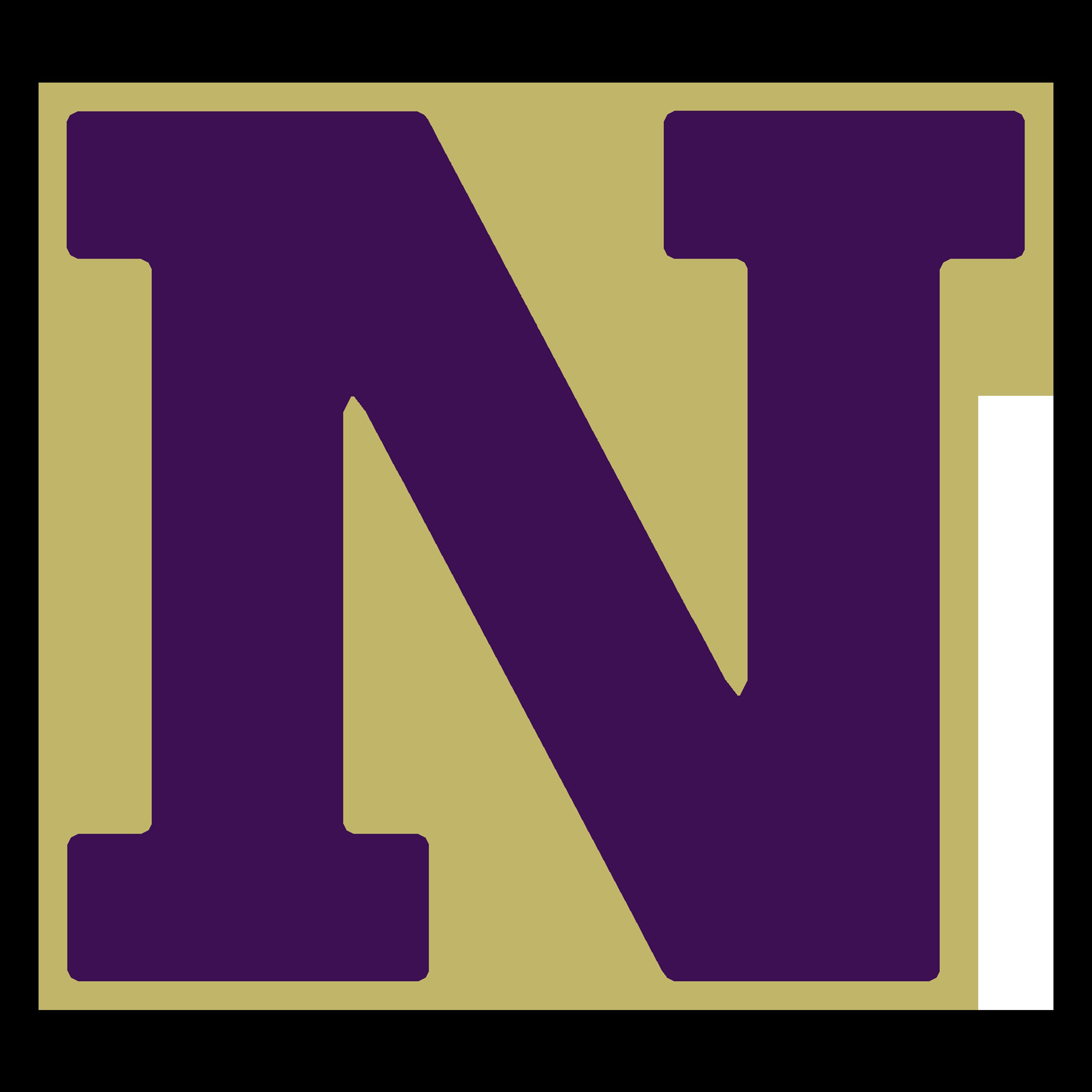Navarro N logo