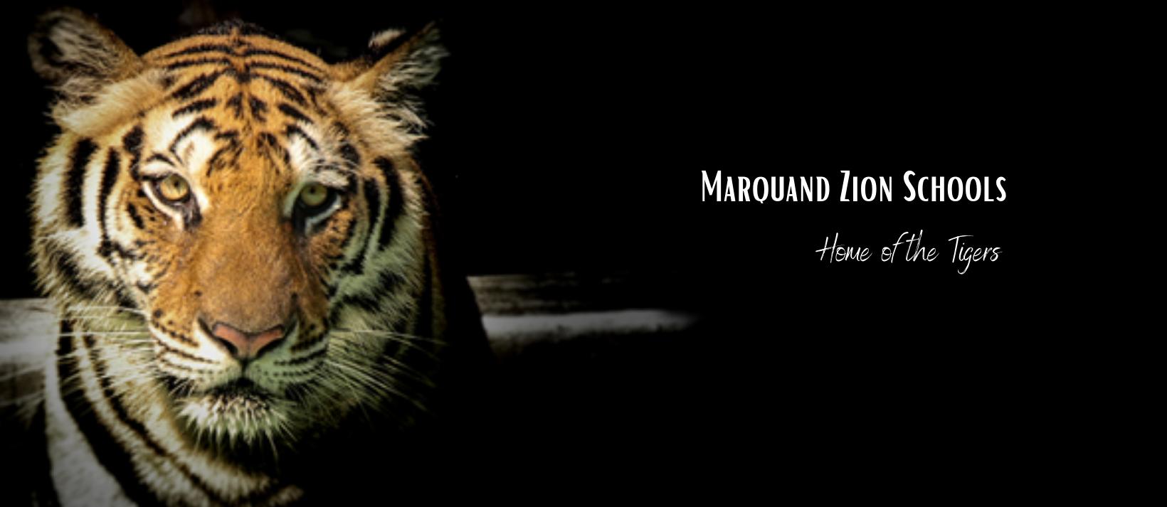 MZ Tigers