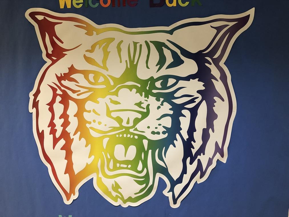rainbow wildcat