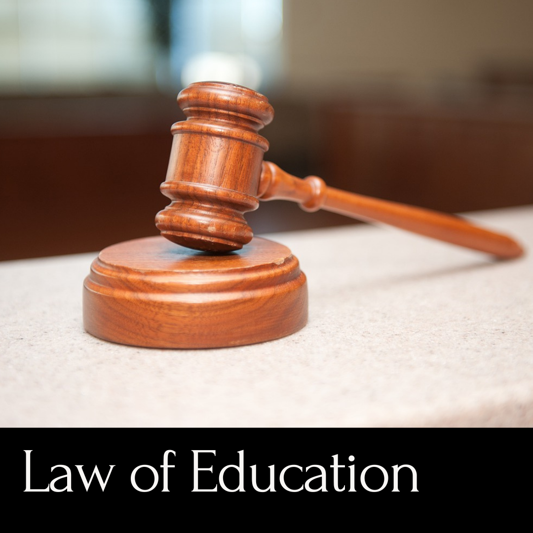 Law of Education - wooden gavel
