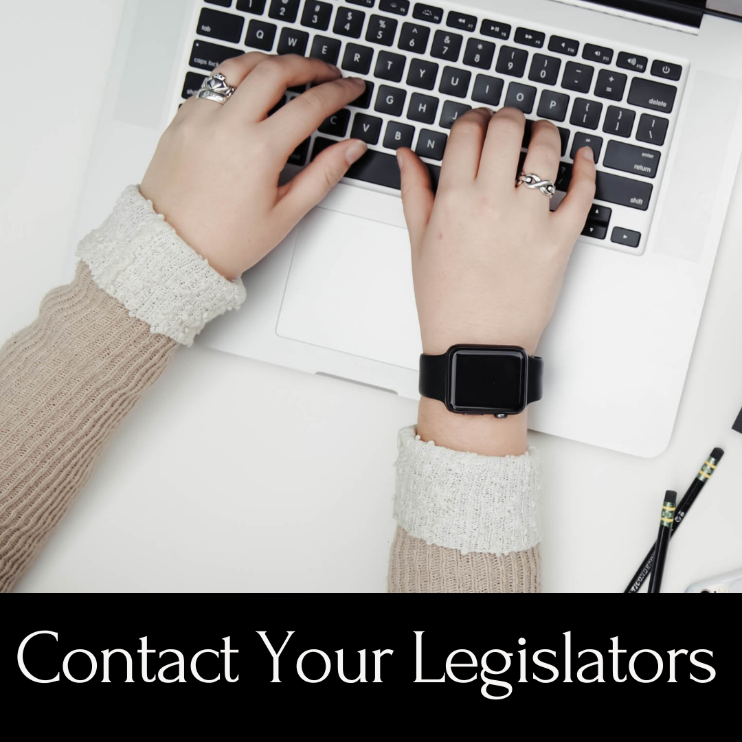 Contact Your Legislators - hands typing on a laptop