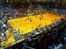 Civic Arena Wood Floor