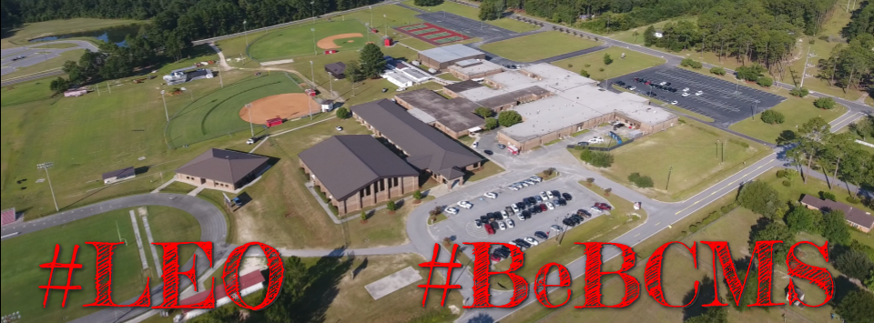 Aerial Photo of BCMS