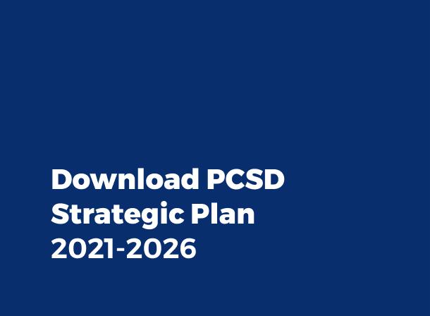 download strategic plan pdf