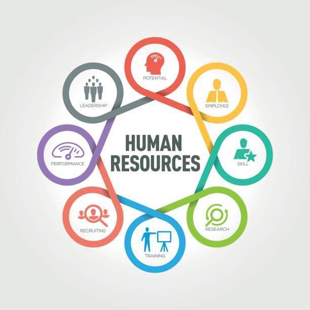 human resources diagram
