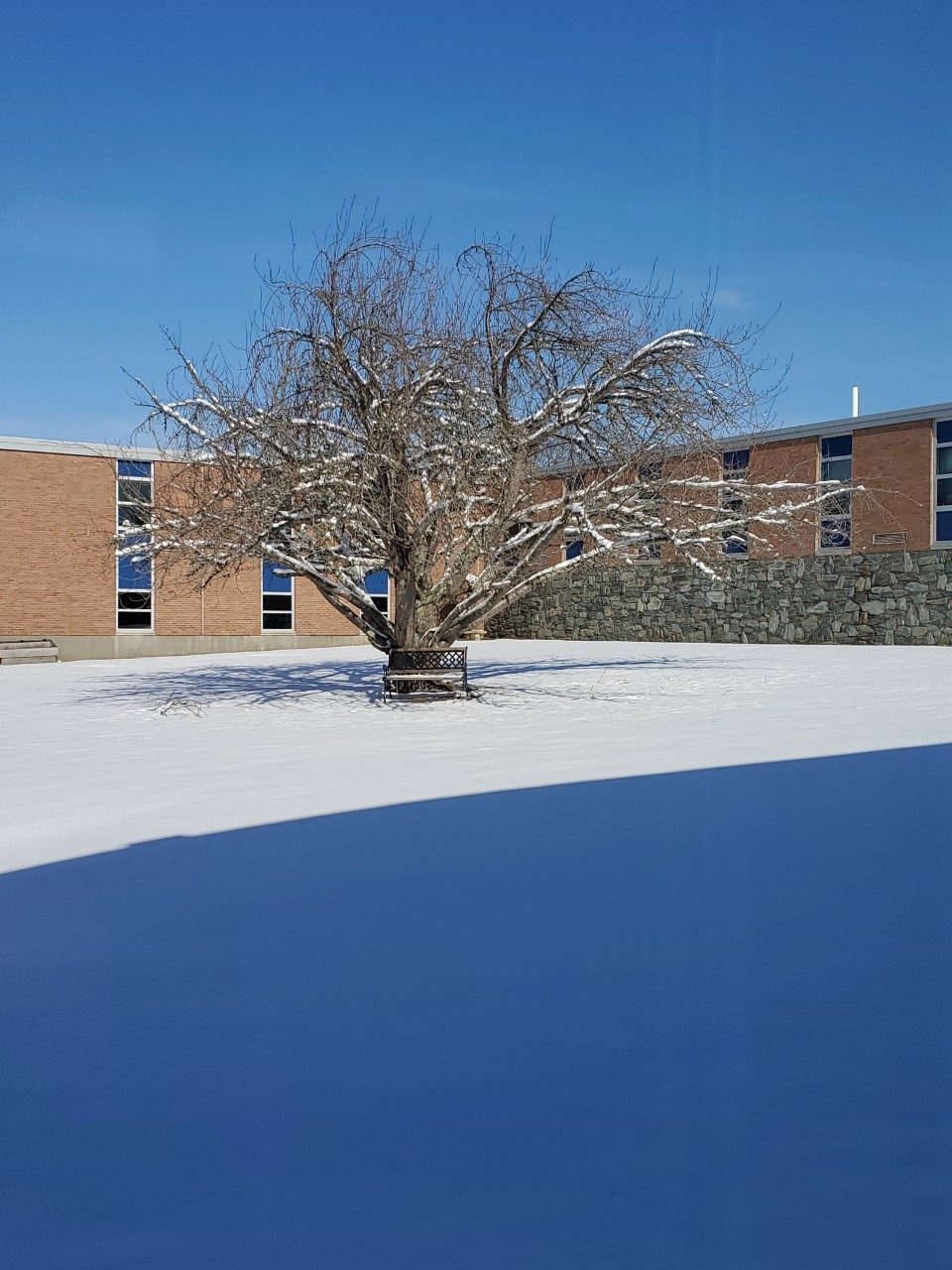 Winter Courtyard