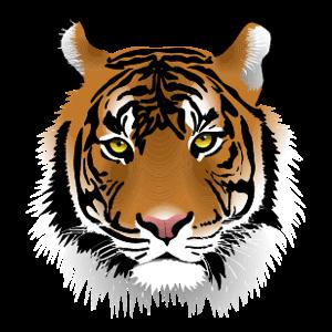 GUSD Tiger