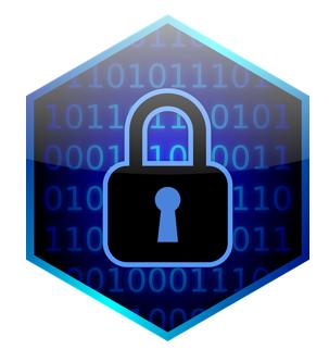 privacy lock graphic