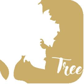1594007620-Tree_og