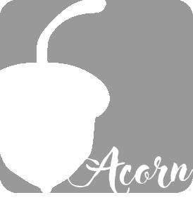 1594007683-acorn