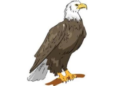 BOES Logo