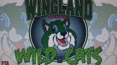Wingland Wildcats PTA