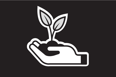 Clipart of hands holding a seedling