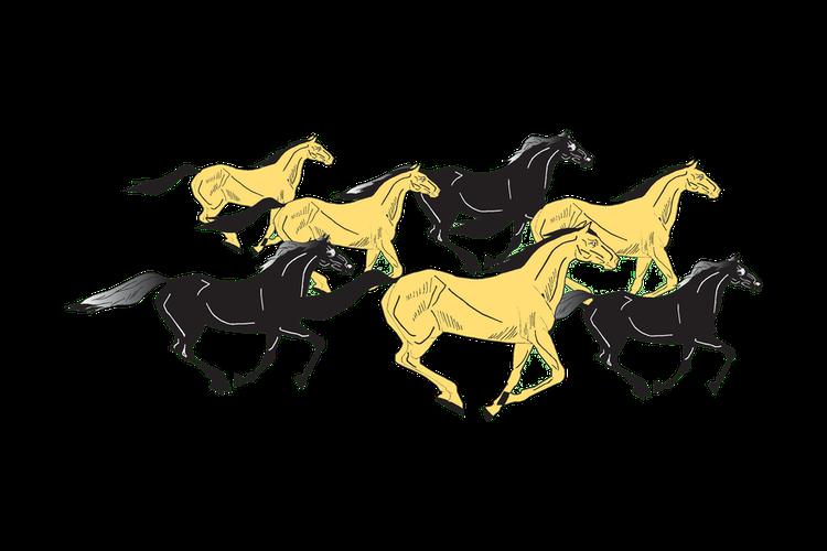 McNary Logo