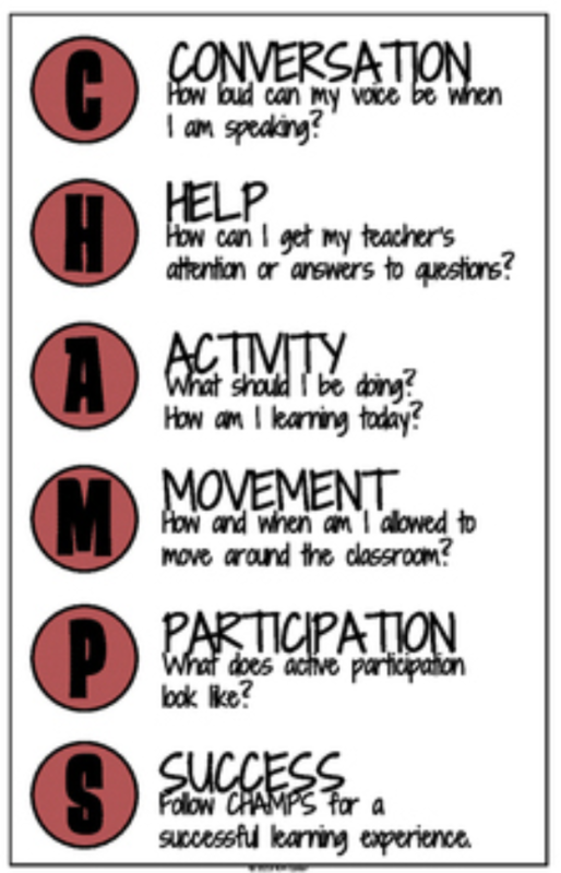 CHAMPS acronym Conversation Help Activity Movement Participation Success
