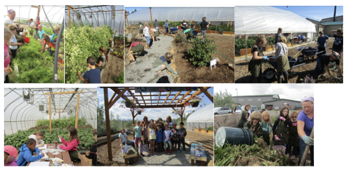 Students actively gardening