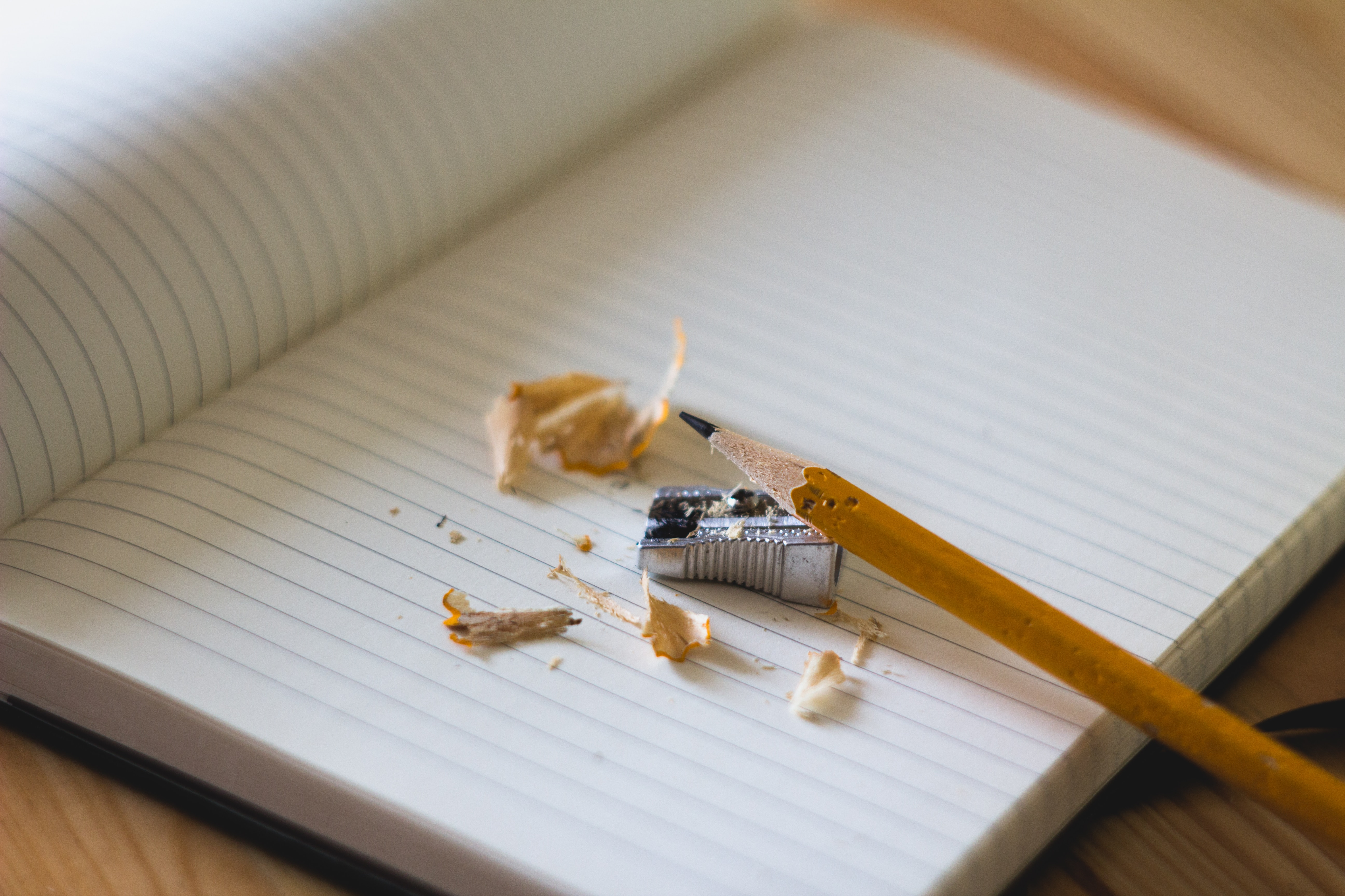 Pencil shavings on a blank piece of notebook paper.
