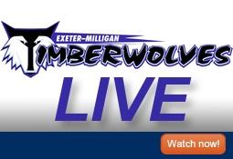 EM Wolves Website Icon
