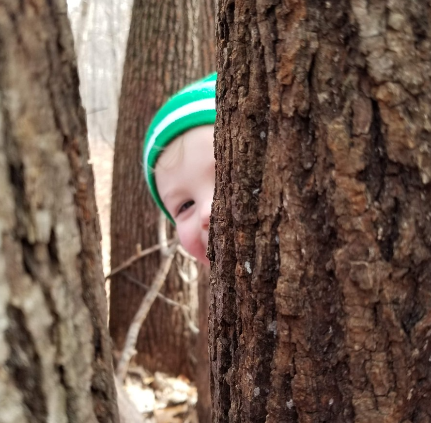 child peeking from behind a tree