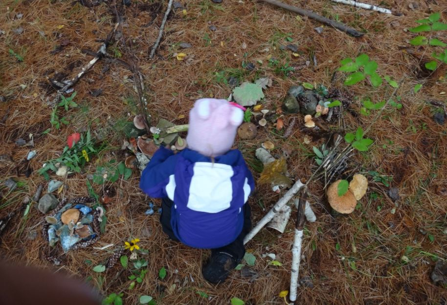 child plays with natural objects on the forest floor