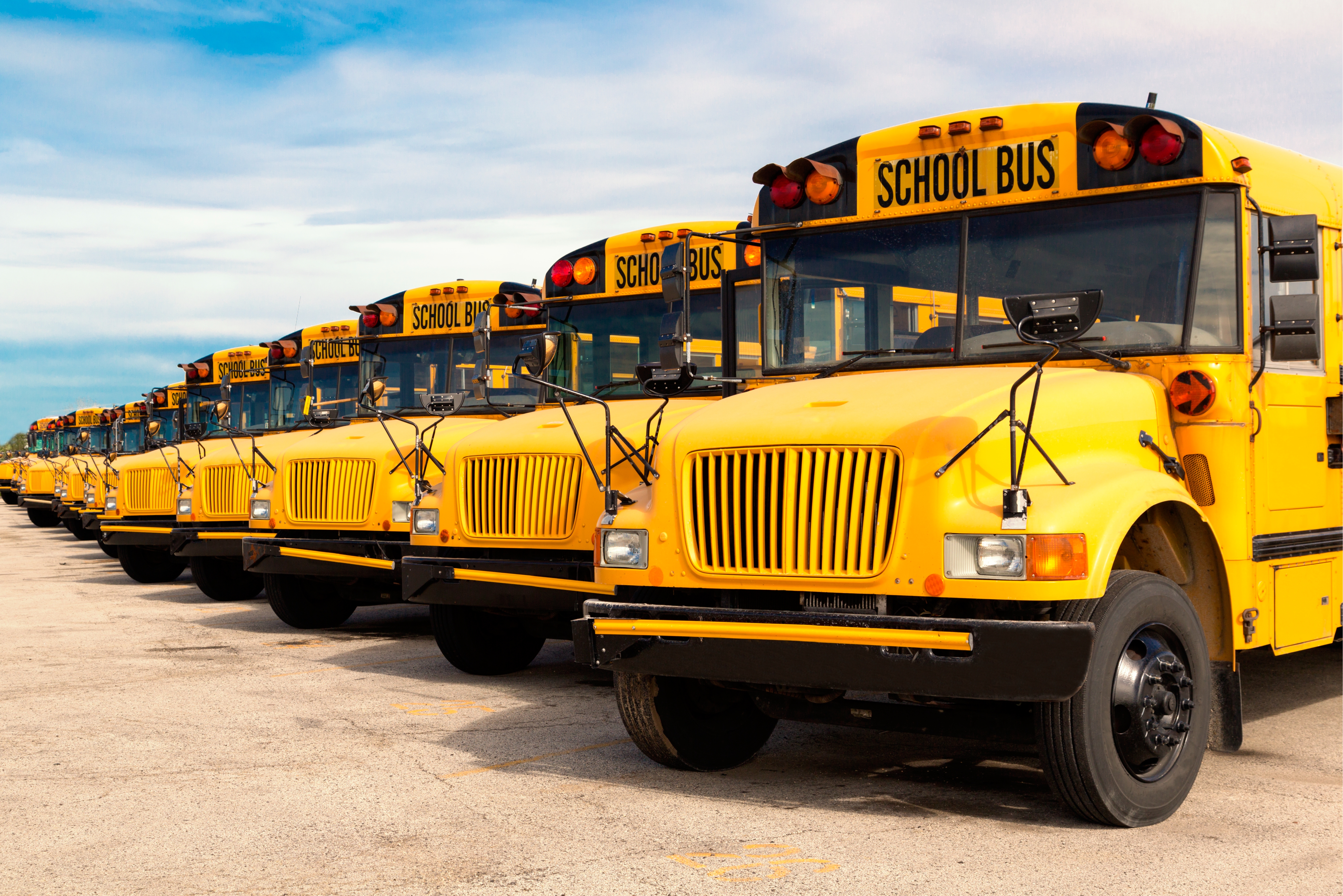 School buses lined up and parked in a row