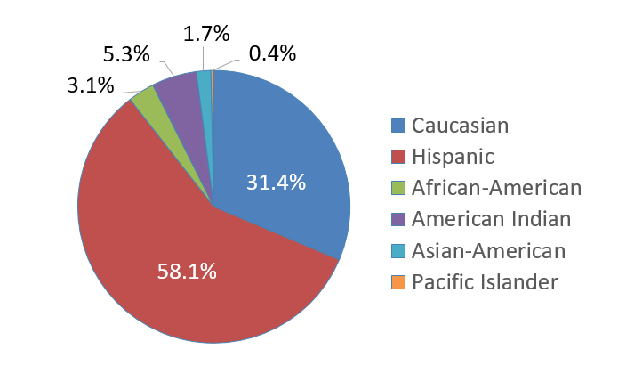 Ethnicity pie chart for students at Rio Rancho Public Schools